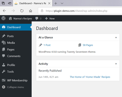allowing-wp-user-to-see-admin-dashboard